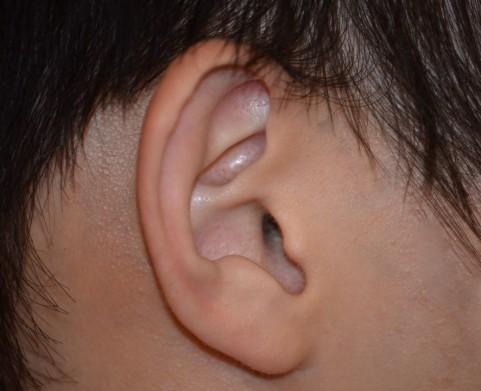 耳が遠い難聴・介護する方のために手元でお知らせチャイム!ELPA ワイヤレスピンポンチャイム AWP-300
