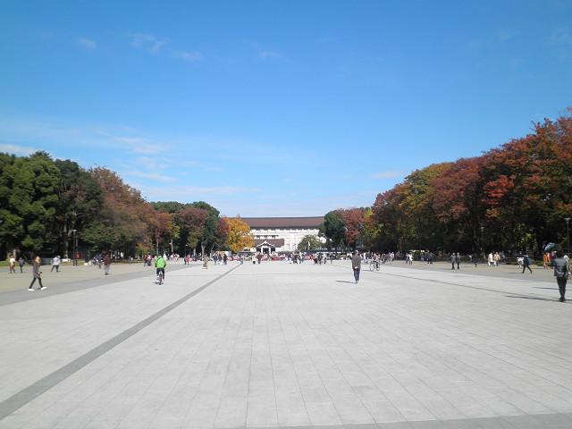 上野公園0881