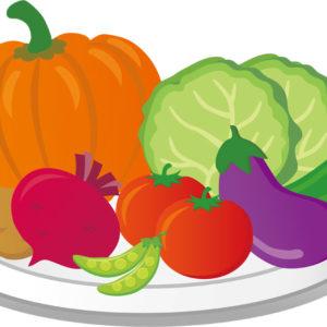 「野菜の種」ランキングまとめ~栄養豊富で長期保存できる~